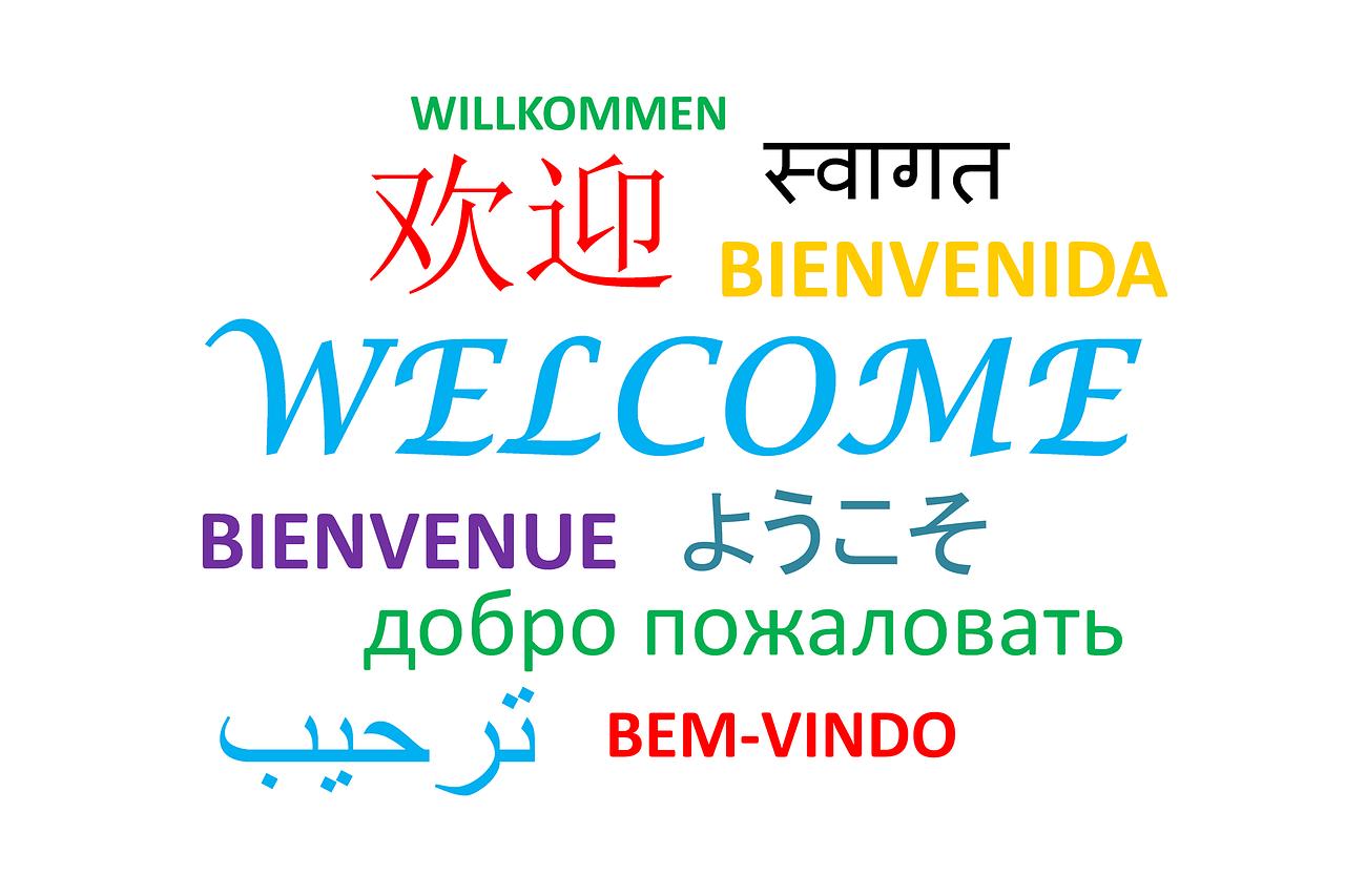 Traducir el Idioma del Sitio Web